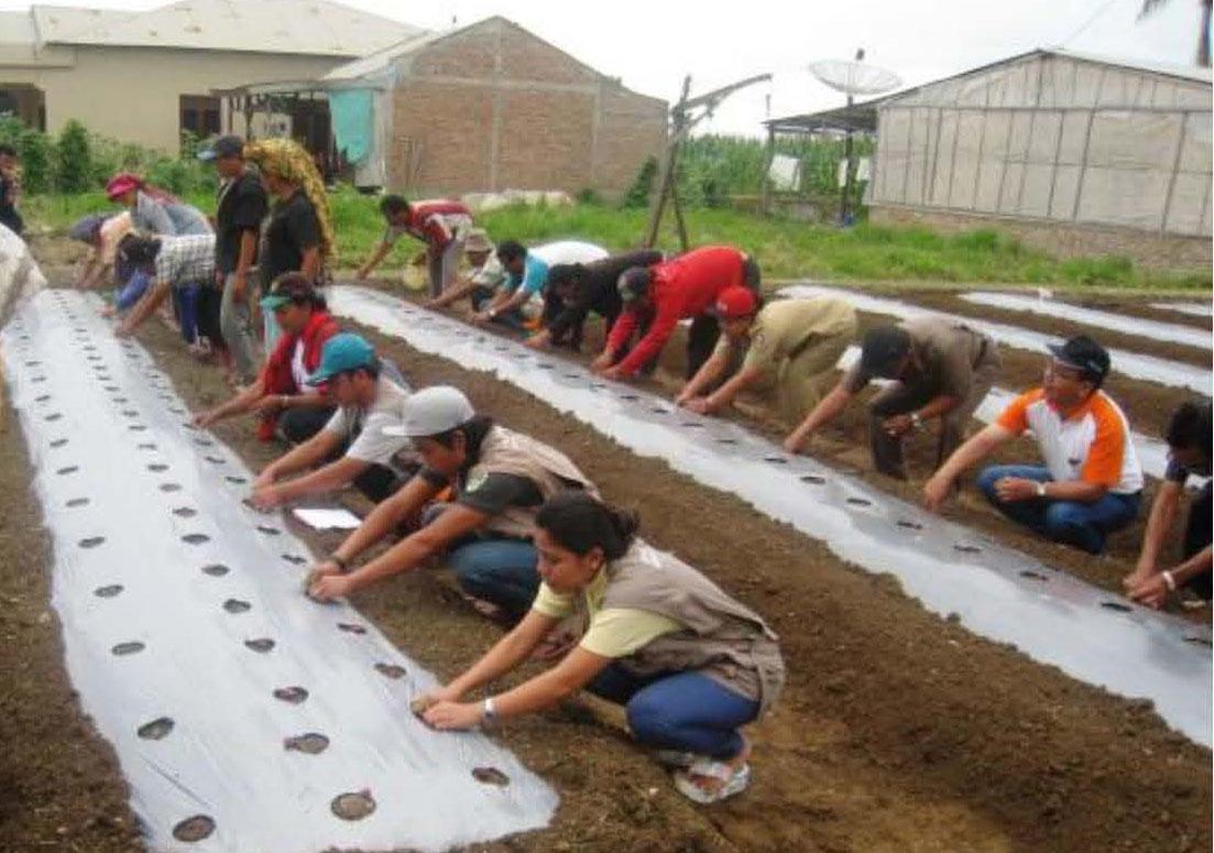 Pelatihan Pertanian